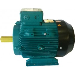 Crompton Greaves Electric Motor Aluminium 2 pole 0.75Kw