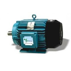 Crompton electric motors cast iron totally enclosed fan for Totally enclosed fan cooled motor