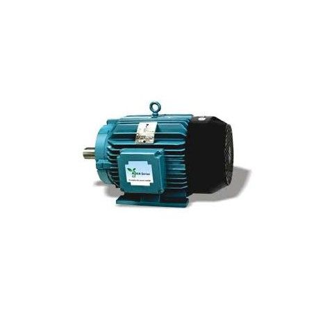 Crompton Greaves Electric Motor Cast Iron 2 pole 18.5Kw
