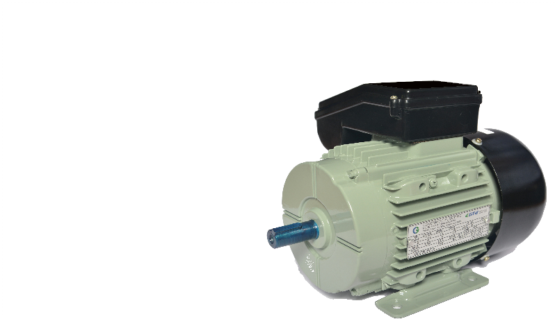 CG Electric Motors-Single Phase