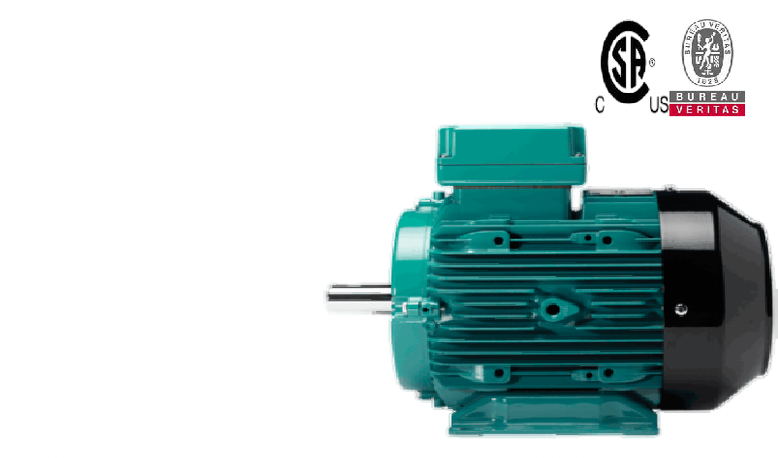 CG Electric Motors UK
